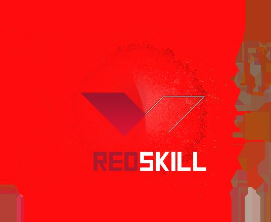 Redskill.pl | Sieć serwerów